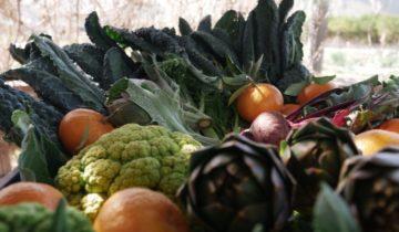 Villa Costanza vegetariana, tra orto bioetico e produttori